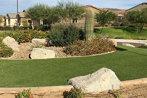 Southwest Grounds flower bed (image)
